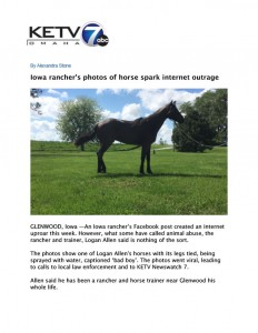 Horse Abuse Investigation