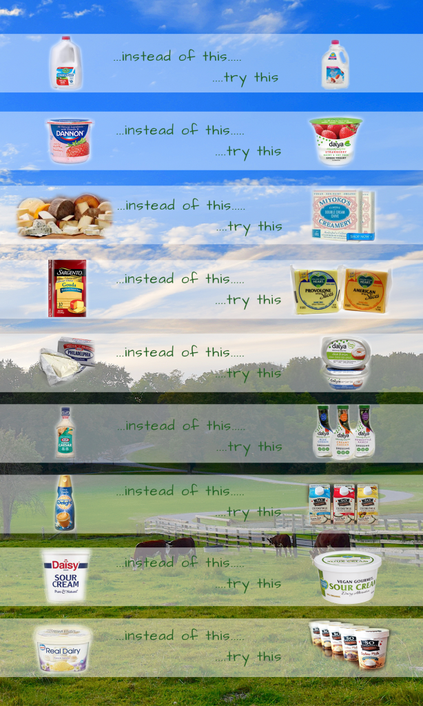 Healthy Dairy Alternatives