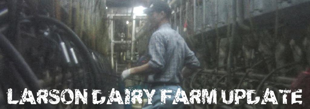 larson dairy farm update