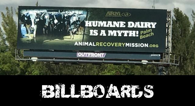 vegan billboards