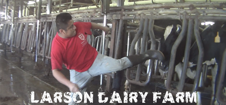 Larson Dairy Farm