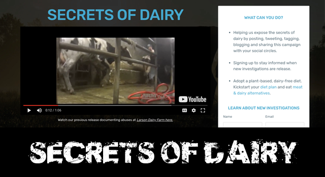 secrets of dairy