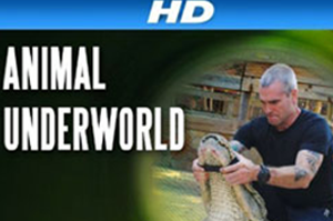 animal underworld coverage