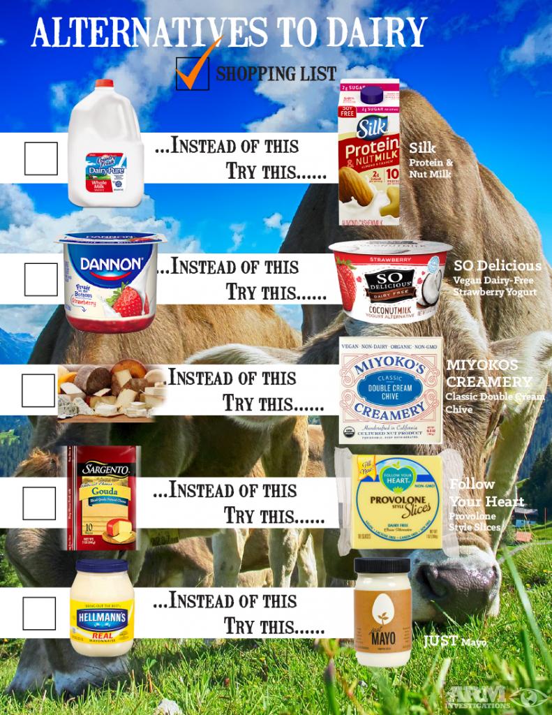 alternatives to dairy